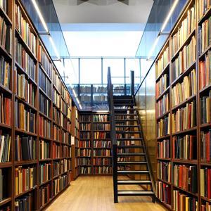 Библиотеки Демидова